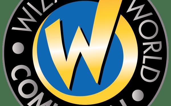 Wizard World Comic Con Chicago 2015: Recap
